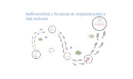 INSTRUMENTOS Y TECNICAS DE ORGANIZACIONES Y METODOS