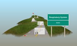 Biology Respiratory System