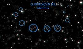 Clasificación del NAPHTHA
