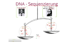 Copy of DNA- Sequenzierung