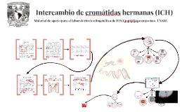 Material de apoyo para el laboratorio de citogenética de FES