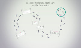 LB-5 Project: Prenatal Health Care