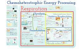 Metabolism: Chemoheterotrophic Nutrition
