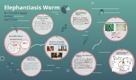 Elephantiasis Worm