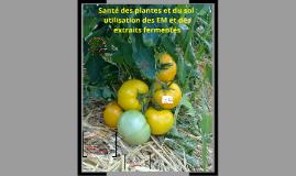 Santé des plantes et du sol : utilisation des EM et des extr