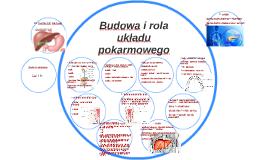 Budowa i rola układu pokarmowego