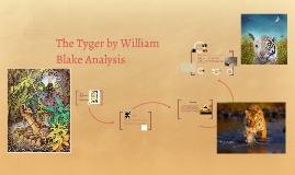 Copy of The Tyger by William Blake Analysis