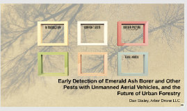 Early Detection of Emerald Ash Borer and Other Pests with Unmanned Aerial Vehicles and the Future of Urban Forestry