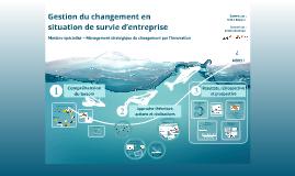 Soutenance MSCI 2012-2013