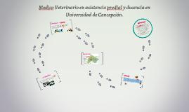 Medico Veterinario en asistencia predial y doncente Universi