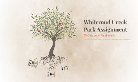 Whitemud Creek Park Assignment
