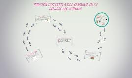 Copy of FUNCIÓN DISTINTIVA DEL LENGUAJE EN EL DESARROLLO HUMANO