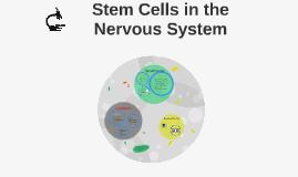 Stem Cells in the Nervous System