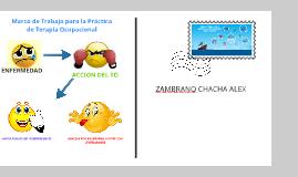 Copy of marco de trabajo para la practica de terapia ocupacional