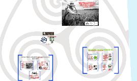 Copy of Copy of Linha Eccosolo Ambiental