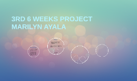 3RD 6 WEEKS PROJECT