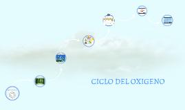 Copy of CICLO DEL OXIGENO