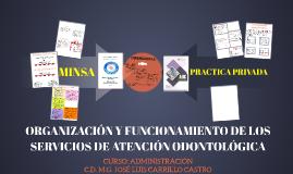 ORGANIZACIÓN Y FUNCIONAMIENTO DE LOS SERIVICIOS DE ATENCIÓN