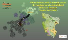 Infraestructura natural de la cuenca del Cumbaza para la sos