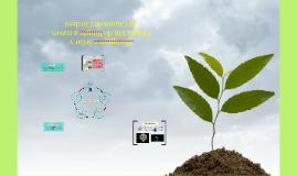 Biodigestor Solar y Obtención de Biogás a través de Guano de