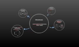 PROGRAMA PARTICIPACION CIUDADANA PARA TODOS