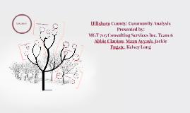 Hillsboro County: Community Analysis
