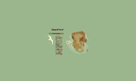 Copy of blaise de pascal