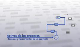 Activos de los procesos
