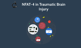 NFAT-4 in Traumatic Brain Injury