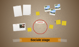 Sociale stage