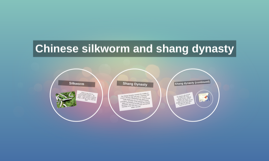 Chinese silkworm and shang dynasty