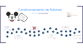 Honors Project: Condicionamiento de Ratones