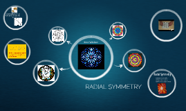 Copy of RADIAL SYMMETRY