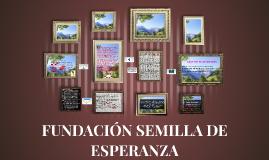 FUNDACIÓN SEMILLA DE ESPERANZA