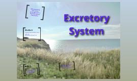 Excretory System intro