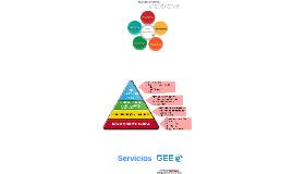Servicios GEE