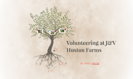 Volunteering at J&V Huston Farms