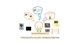 FUNDACIÓN RESCATE ANIMAL ARMENIA