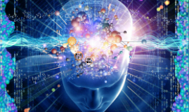 Neurovigilia: Integración de Imágenes de Neuro