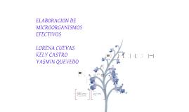 Copy of ELABORACION DE MICROORGANISMOS EFECTIVOS