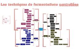 Techniques de fermentations différées