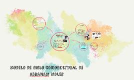 Copy of Modelo de Ciclo Sociocultural de Abraham Moles