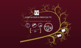 Feria Escolar de Módulos Educativos TIC