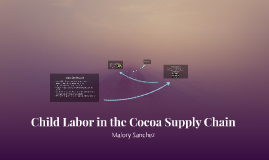 Child Labor in the Cocoa Supply Chain