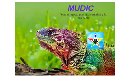 MUDIC