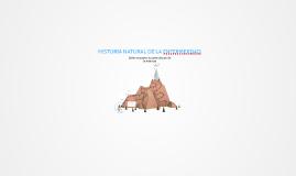 HISTORIA NATURAL DE LA ENFEMERDAD