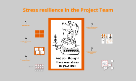 Stress resilience in the Project Team