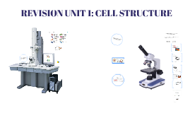 AS UNIT 1 CELL STRUCTURE REVISION