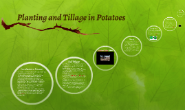 Planting and Tillage in Potatoes