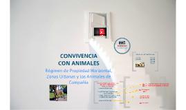 Manizales - Los Animales de Compañía en las Áreas Urbanas y la Propiedad Horizontal